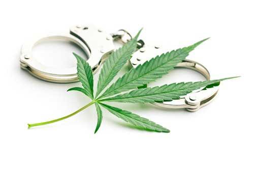 大麻取締法の刑罰